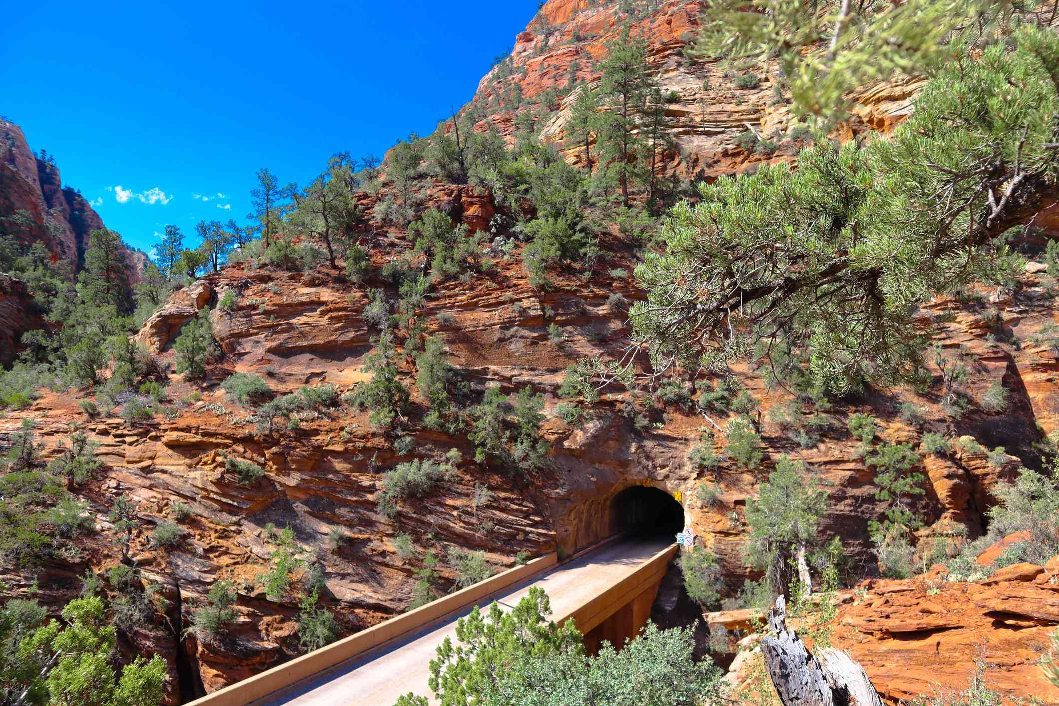 Image of entrance to Zion-Mount Carmel Tunnel
