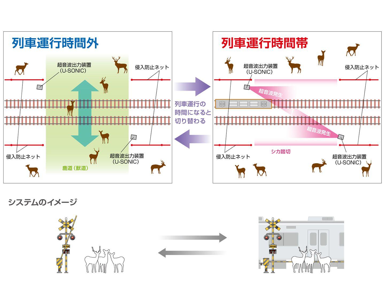 deer crossing, Kintetsu Railway Co., Japan