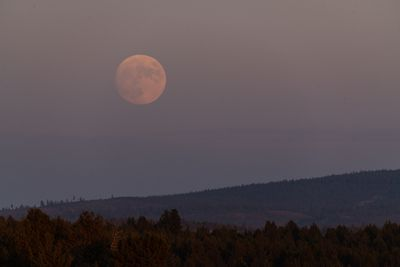 The full moon rises over the hills shrouded in smoke from wildfires on July 22, 2021 in Bly, Oregon. The Bootleg Fire, which started on July 6th near Beatty, Oregon, has burned over 399,000 acres and is currently 38 percent contained.