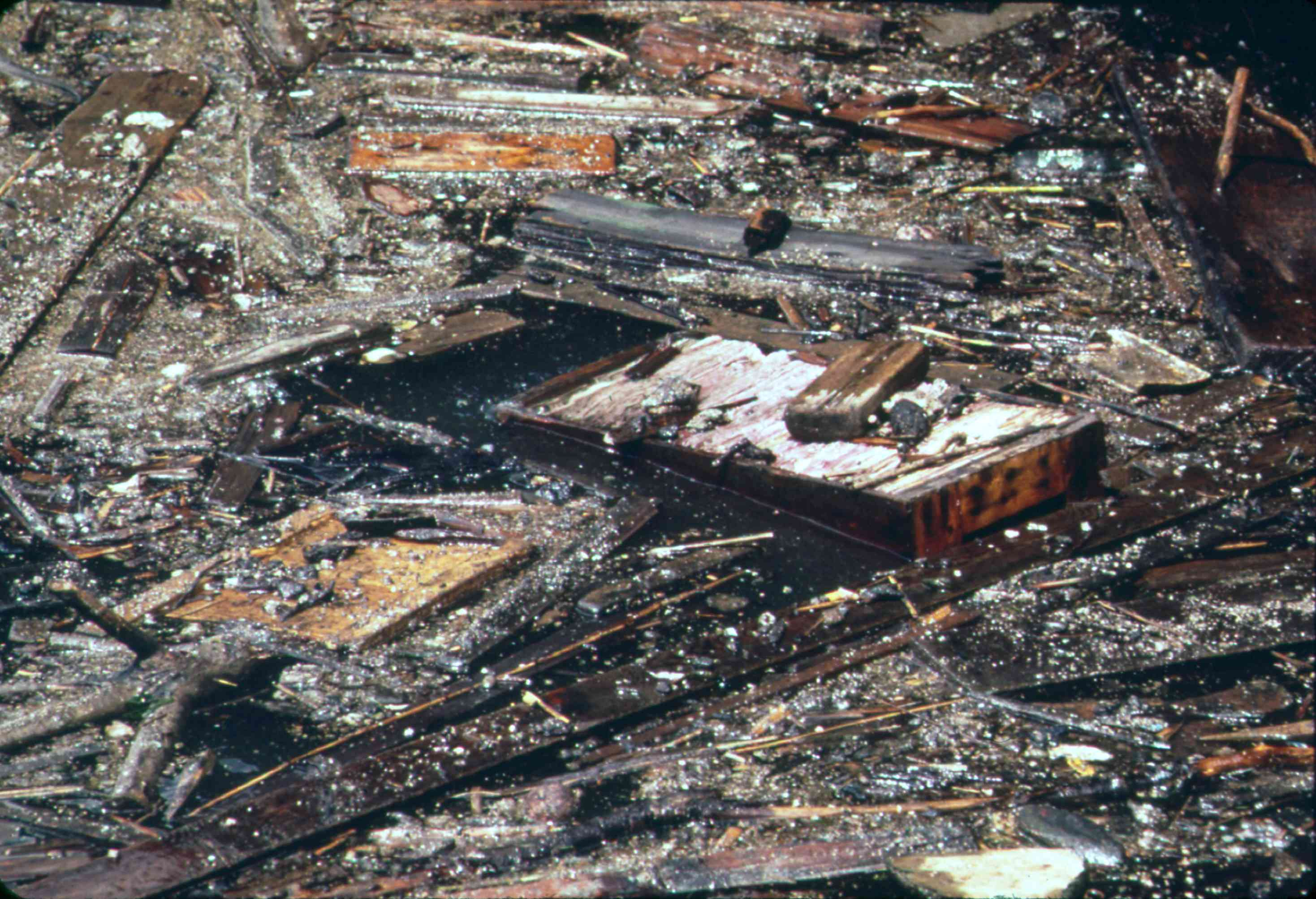 pollution in the Hudson River, New York