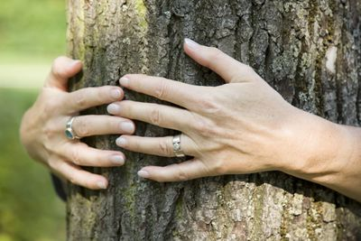 A woman with a wedding ring hugs a tree.