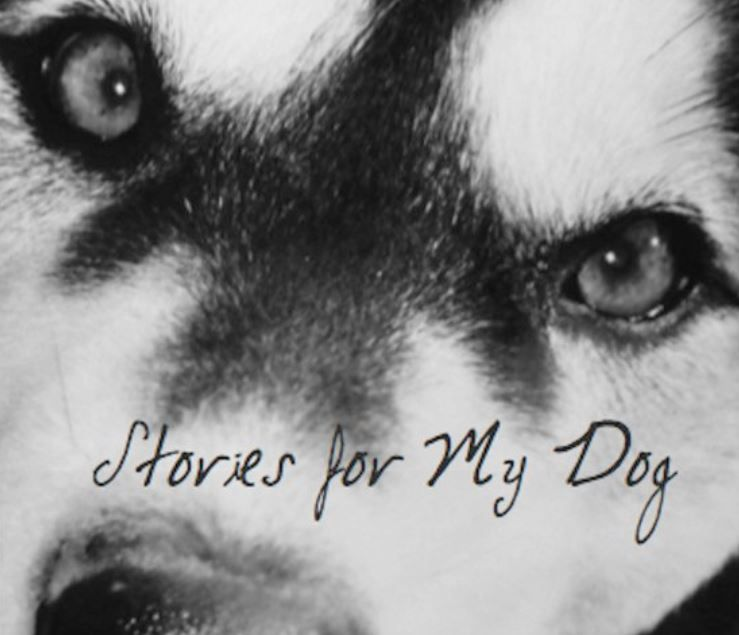 Cover of Stories For My Dog book