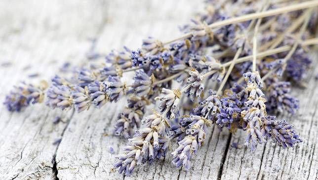 Se ha demostrado científicamente que algunos aromas te hacen feliz