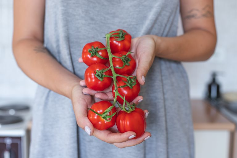 woman in gray dress holds out red tomatoes on the vine in hands