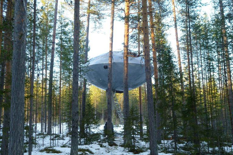 Metallic Treehotel UFO treehouse suspended in trees in forest
