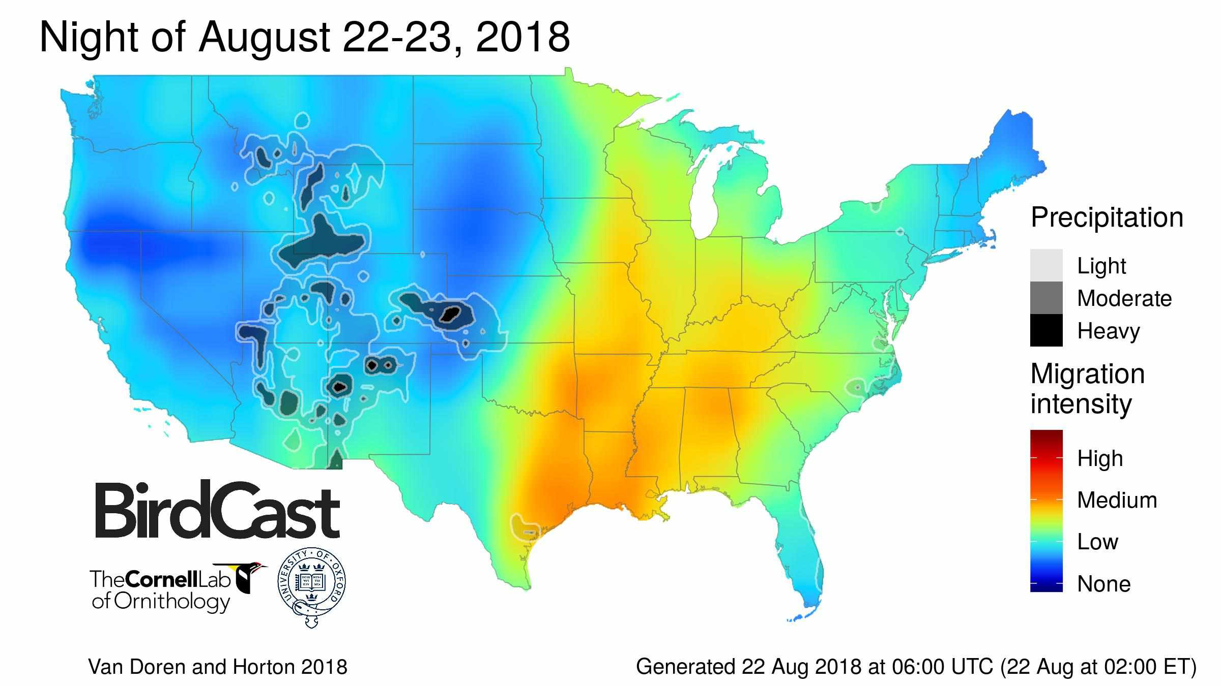 birdcast forecast map