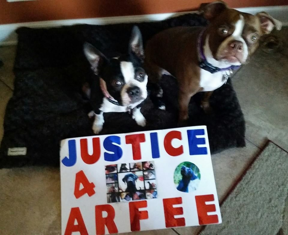 A photo posted by supporters on the 'Justice For Arfee' Facebook page.