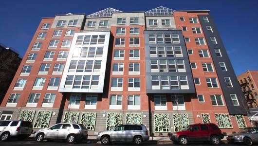 Una col rizada del Bronx: la vivienda asequible se une a la agricultura hidropónica en Morrisania
