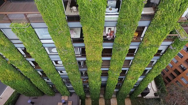 Vertical gardens with windows in between