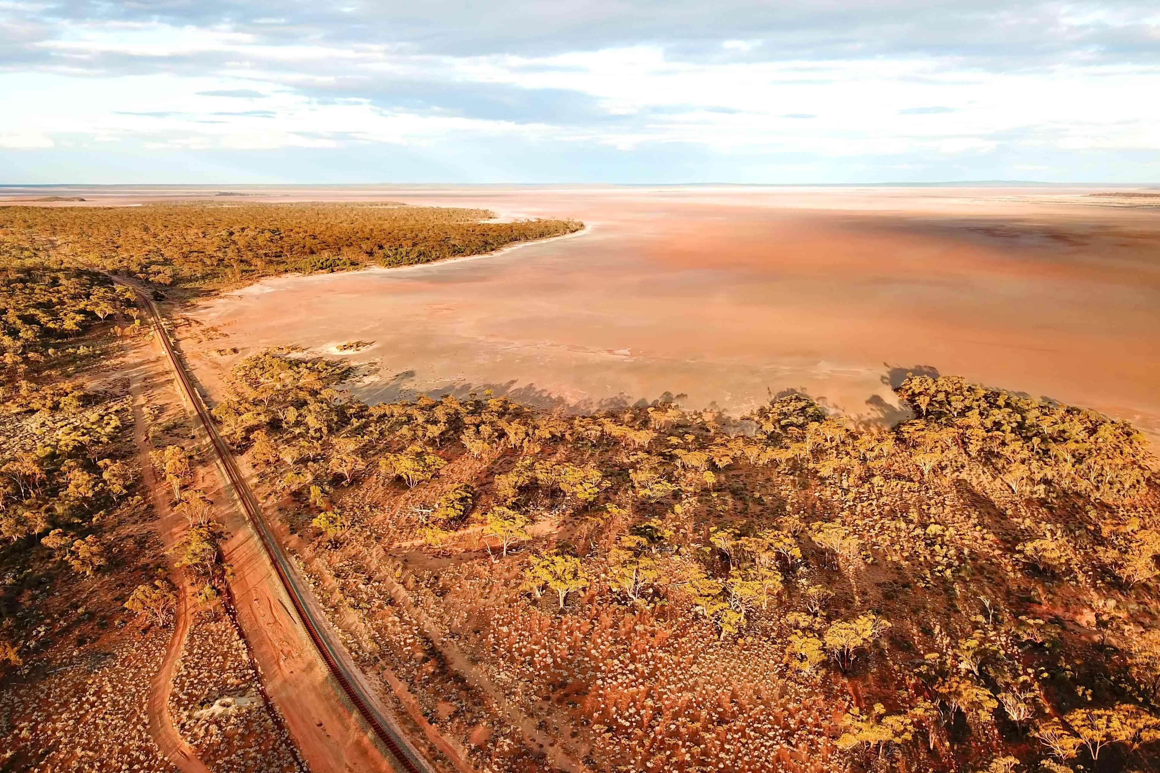 Indian Pacific Railroad cutting across Australian savannah and bush