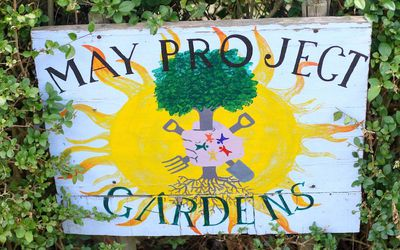 How Community Gardens Help And Even Hurt
