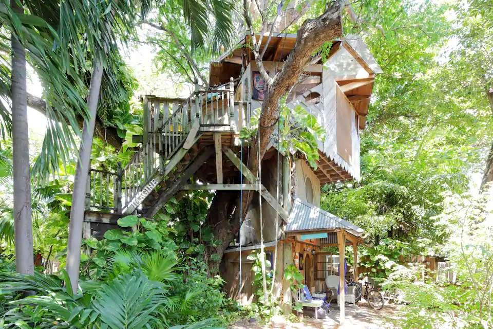 Treehouse Canopy Room