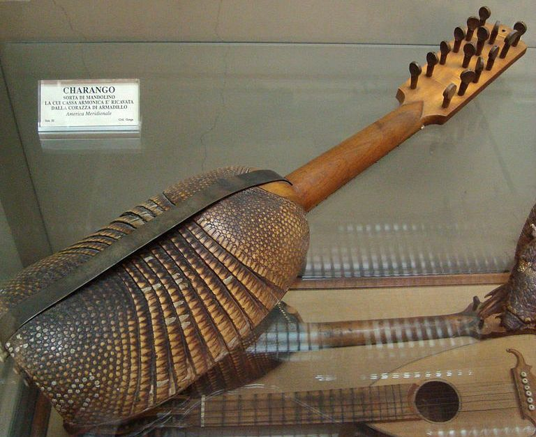 Charango, a stringed musical instrument where the belly is created from the shell of an armadillo and attached to a guitar type neck