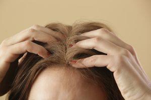 Rubbing dry shampoo on hair.