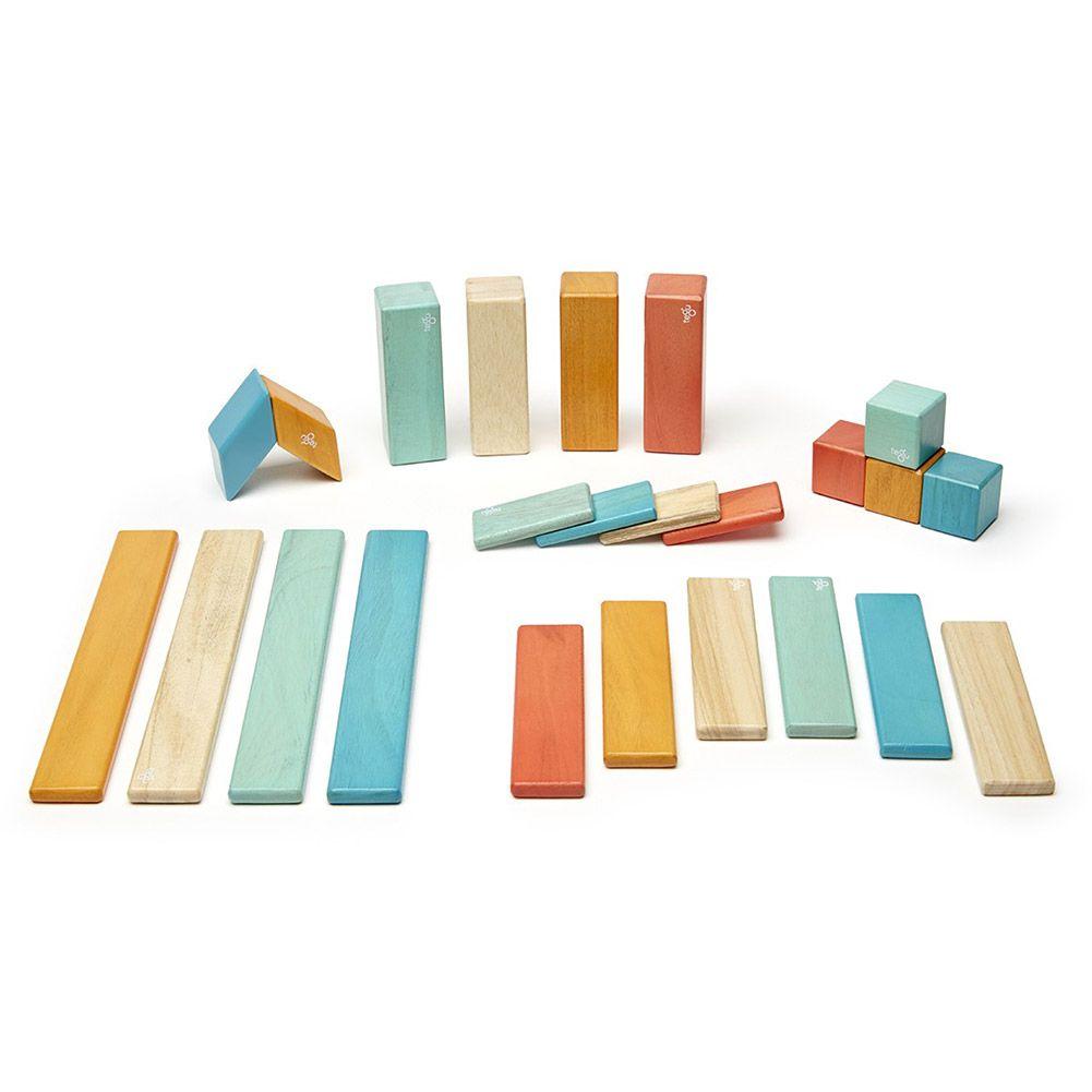 Tegu Tints Block 24 Piece Set