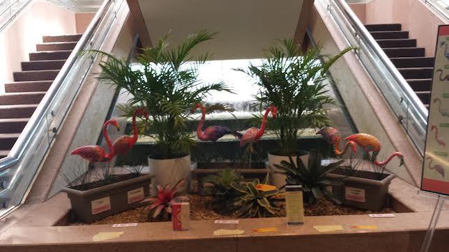 Flamingos at Sarasota airport