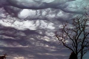 undulatus asperatus cloud