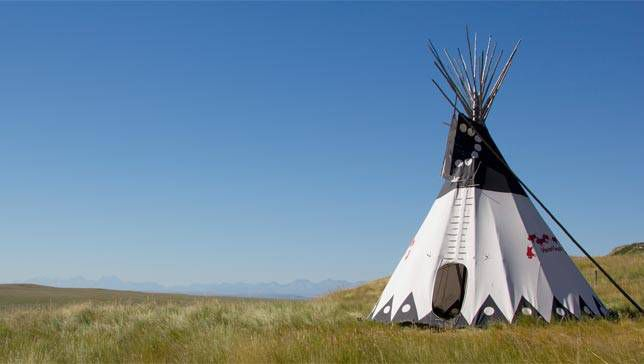 Tipis: Everything You Ever Wanted to Know but Were Afraid to Ask