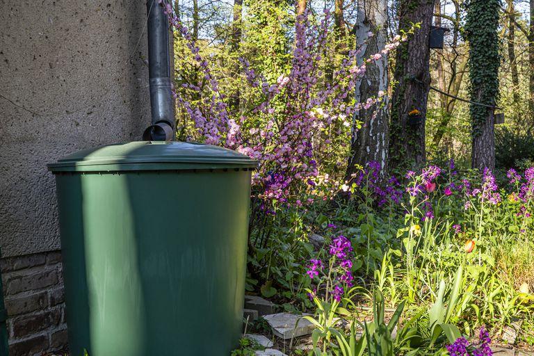rain barrel with flowers in a garden in spring