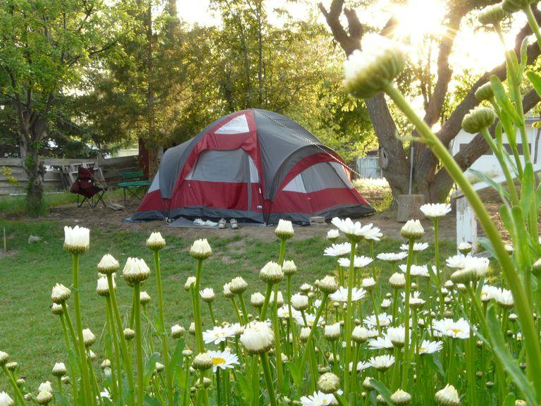 El gran campamento americano en el patio trasero