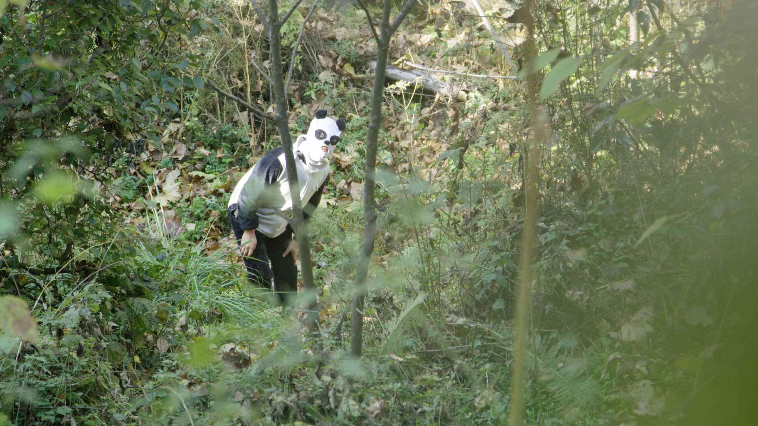 keeper disguised as a panda