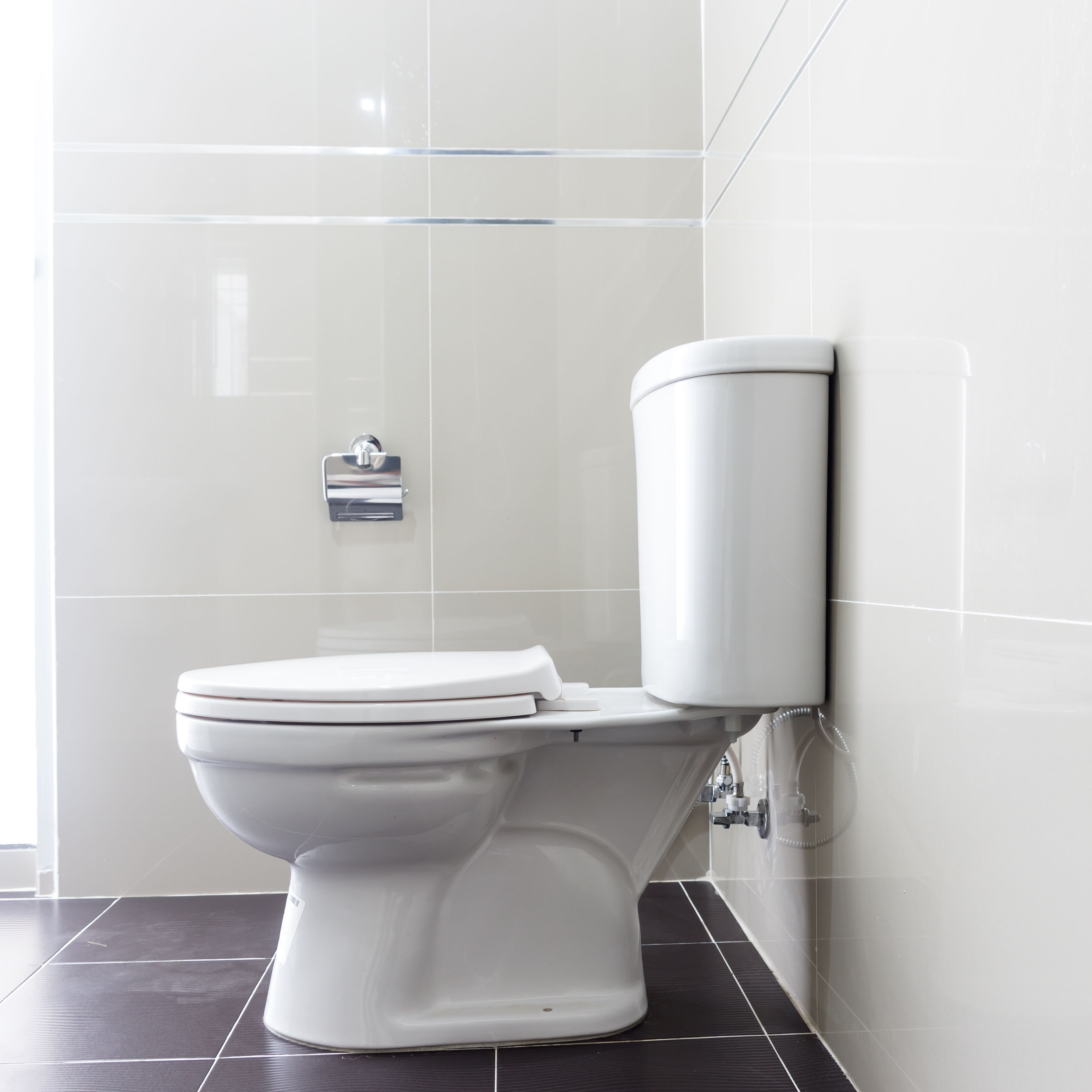 Urine Separating Toilets Are Not Quite As Wonderful As We Keep Saying They Are