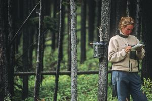 An environmental scientist records animal tracking data in the Livingstone Range, Alberta.