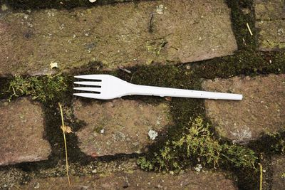 Plastic fork laying on the ground