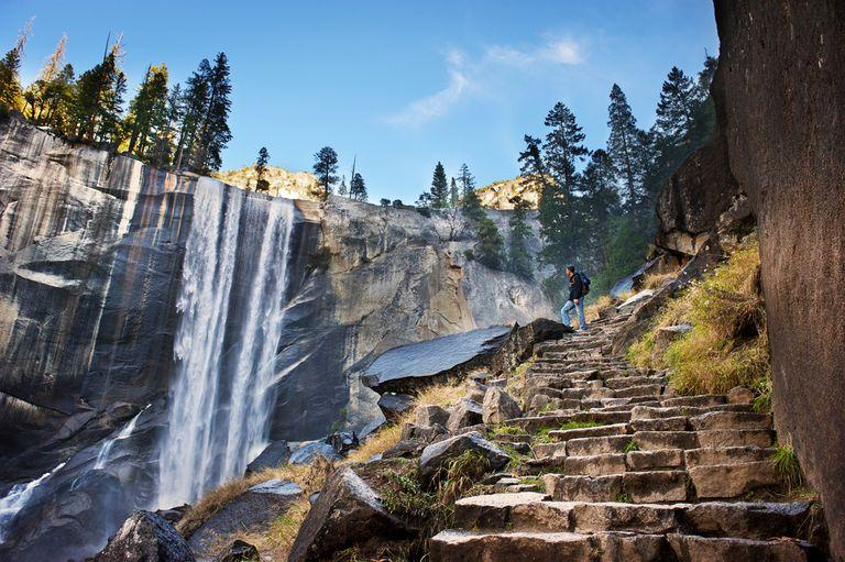 ¿Cómo serán nuestros parques nacionales en 2116?