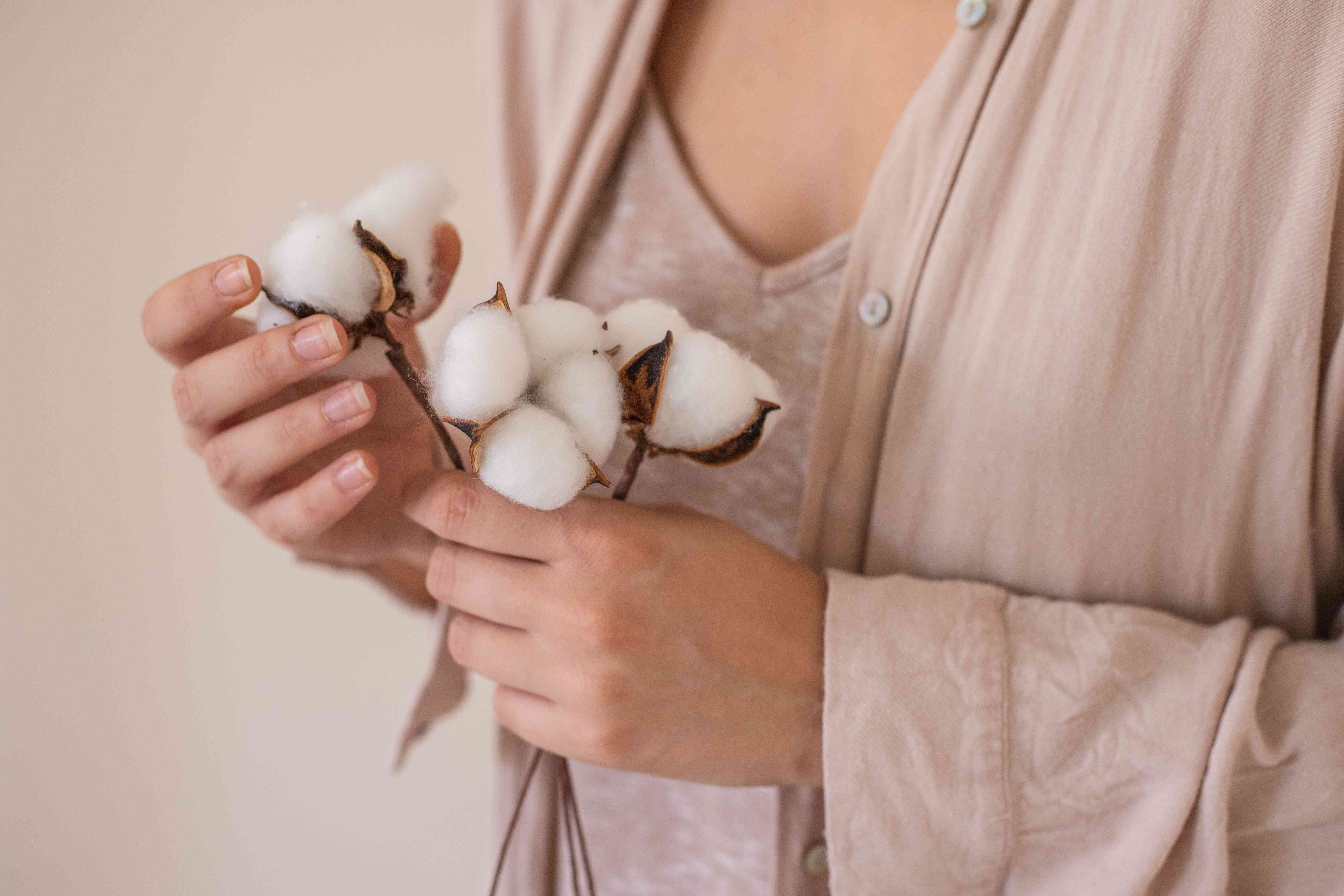 person wearing blush-colored cotton clothing holds cluster of cotton bolls in hands