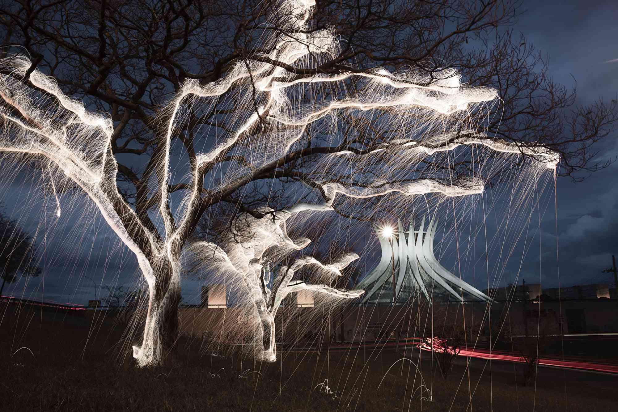 Impermanent Structures light painted trees photographs Vitor Schietti Brasilia