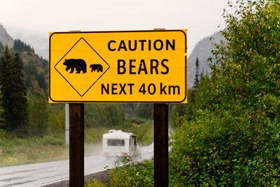 A yellow sign that warns visitors about bears by a road.