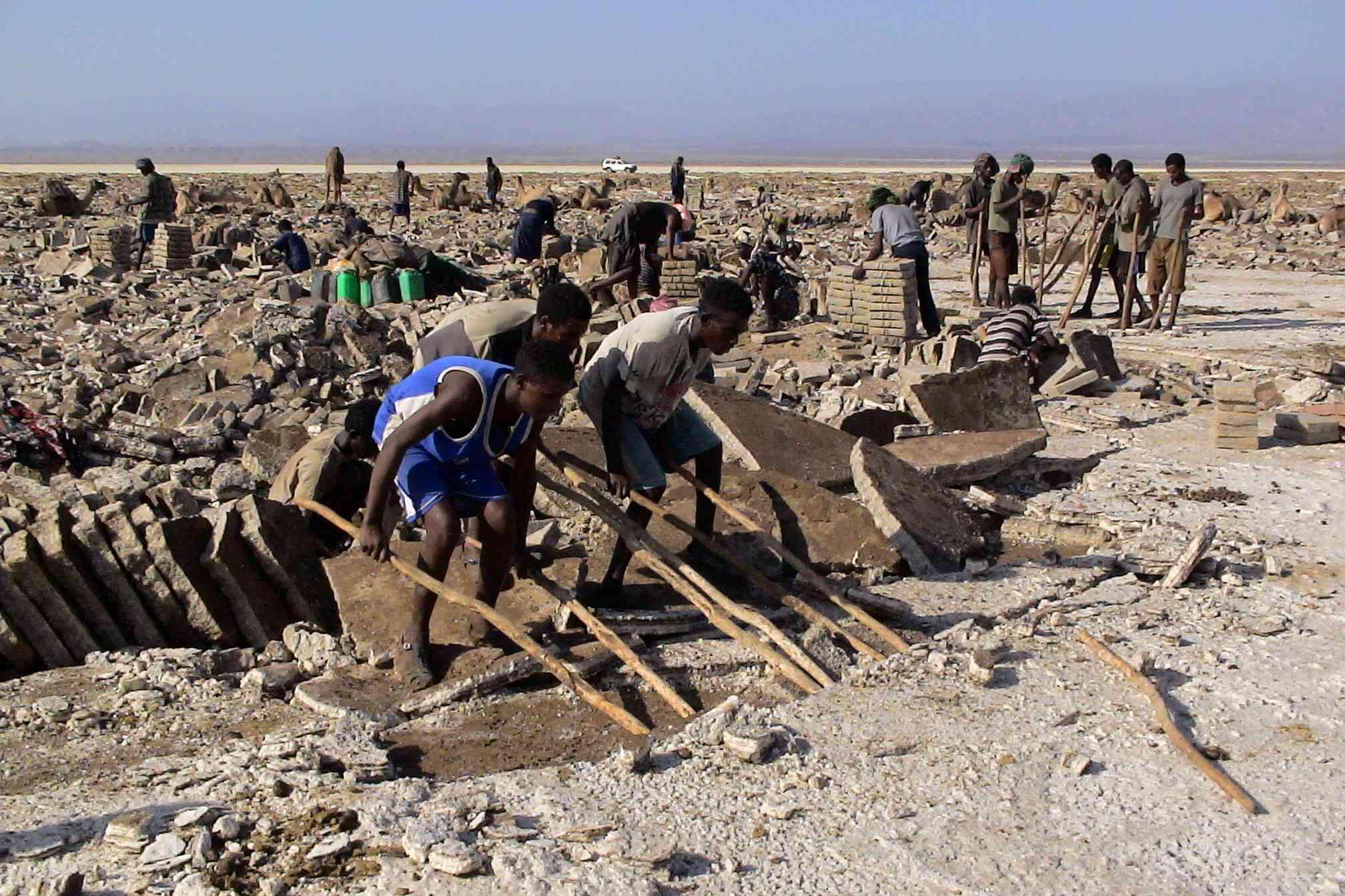 Afar people mining salt in Danakil Depression