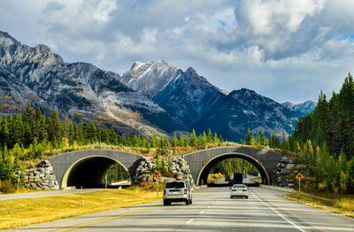 Wildlife bridge on the Trans-Canada Highway in Banff