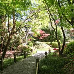 San Francisco Golden Gate Park Tea Garden
