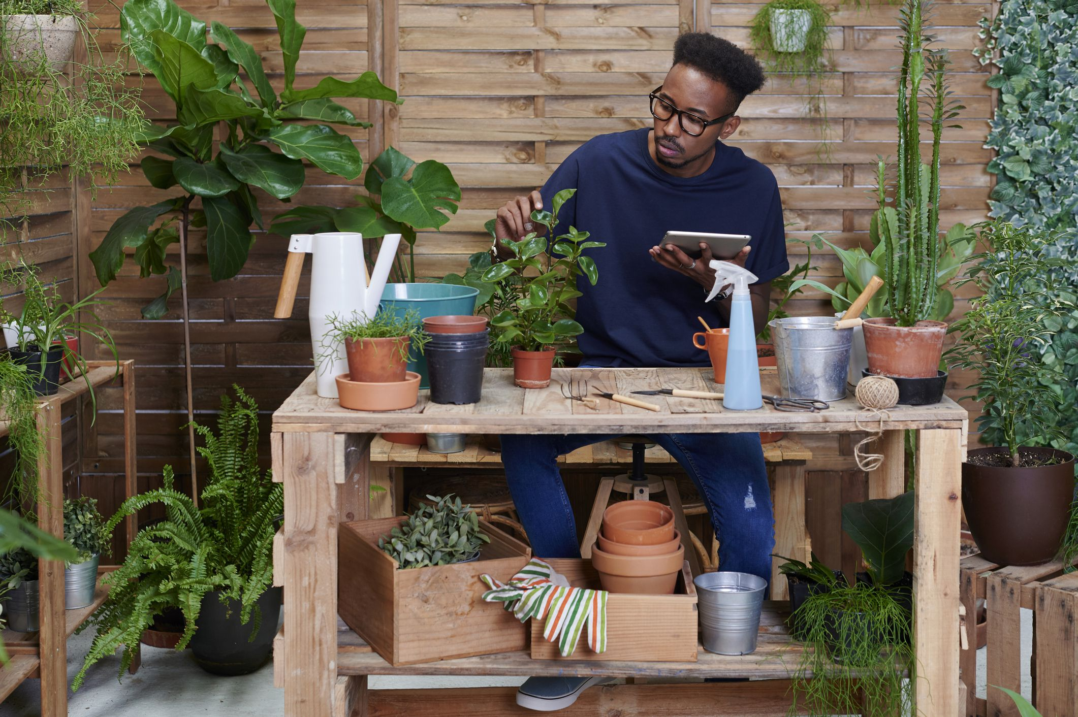 10 Great Gardening Websites You Must Read Backyard garden ne demek