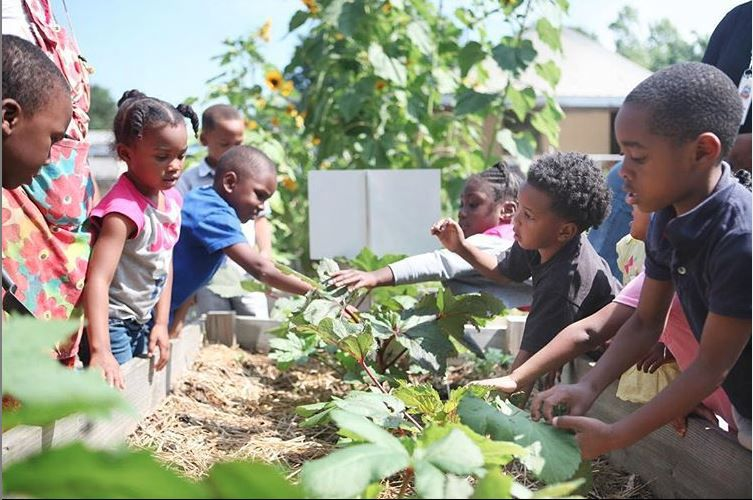 Student farms at Little Ones Learning Center work in the school garden.