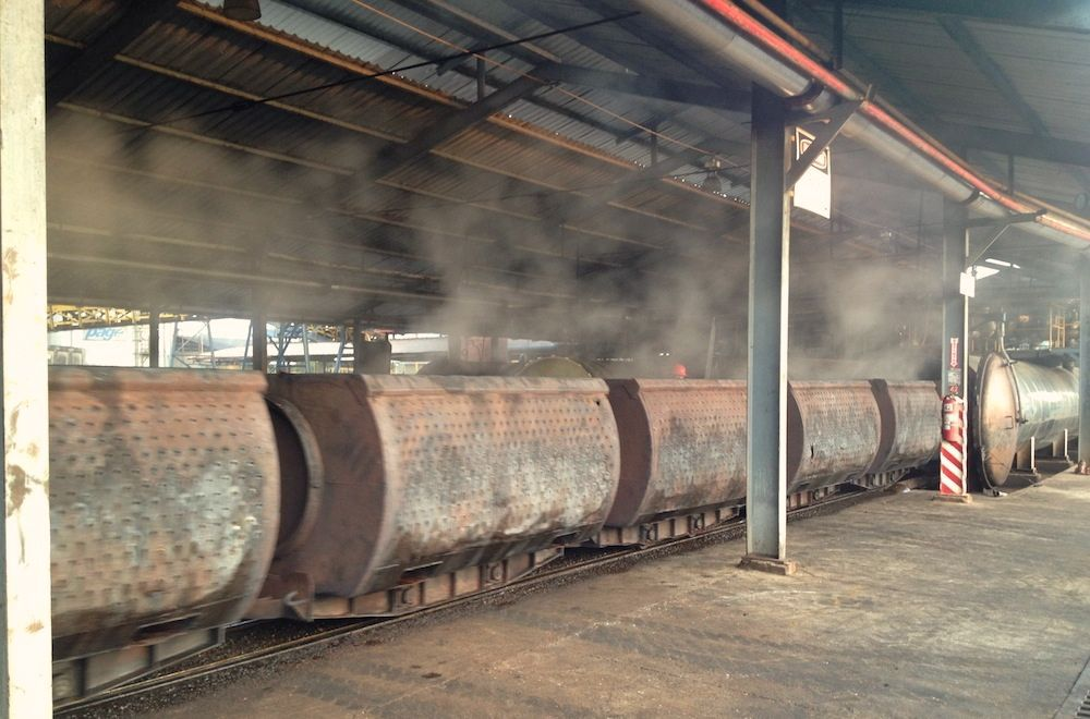facility steaming palm fruits