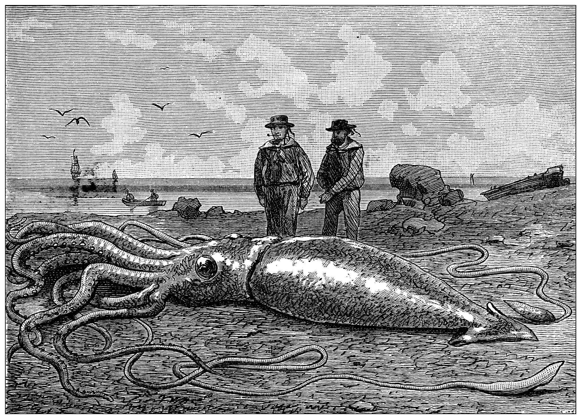 black and white illustration two men and beached giant squid