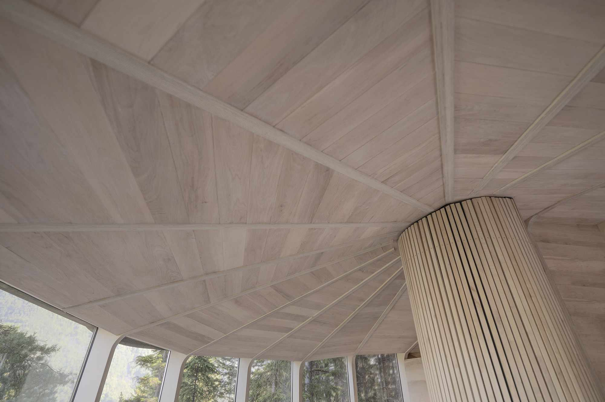 Woodnest treehouse cabin by Helen & Hard Architects radial ceiling