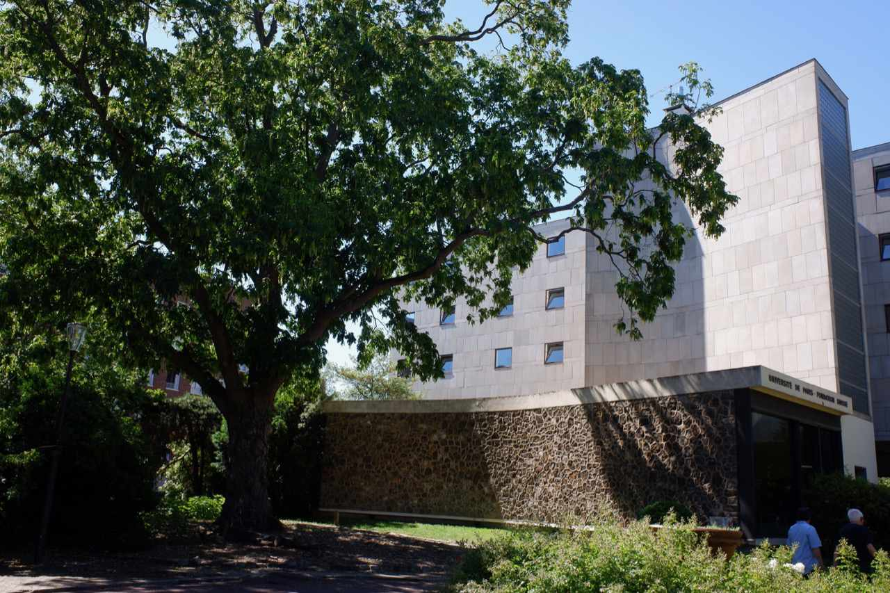 Swiss Pavilion tree