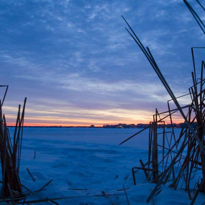 sunrise from the cattails