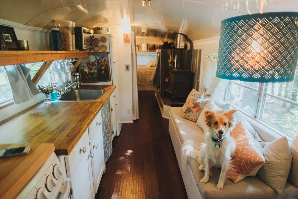 School bus converted into a tiny house with a dog