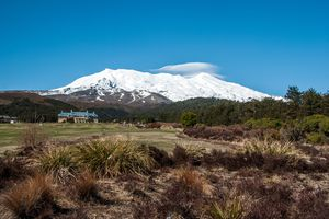 a white-capped Mount Ruapehu with Whakapapa Village and Chateau Tongariro in the foreground with flat land covered by grass, green trees and bushes, and brown groundcover in Tongariro National Park, North Island, New Zealand