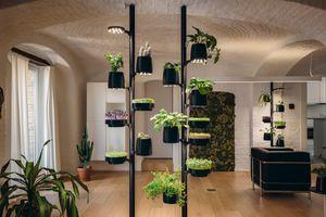 HomeForest installation