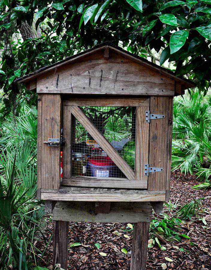 Cumberland Island: Raccoon cage