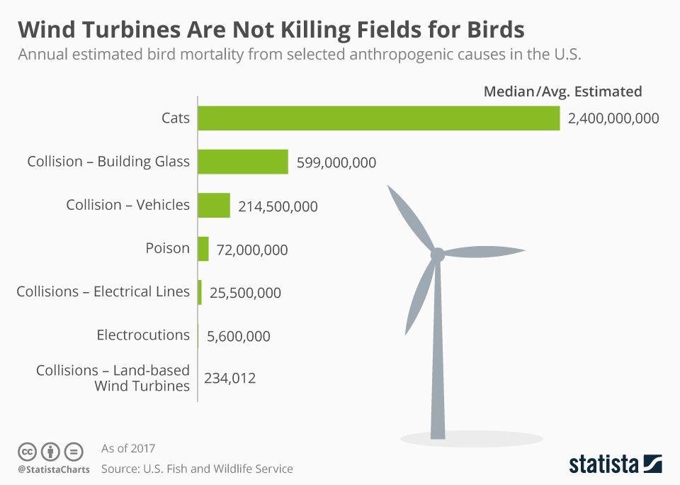 Bird deaths chart