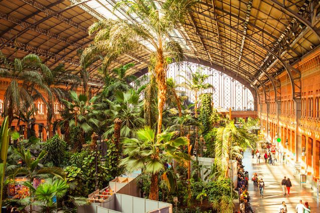 Enormous indoor greenhouse with people walking through