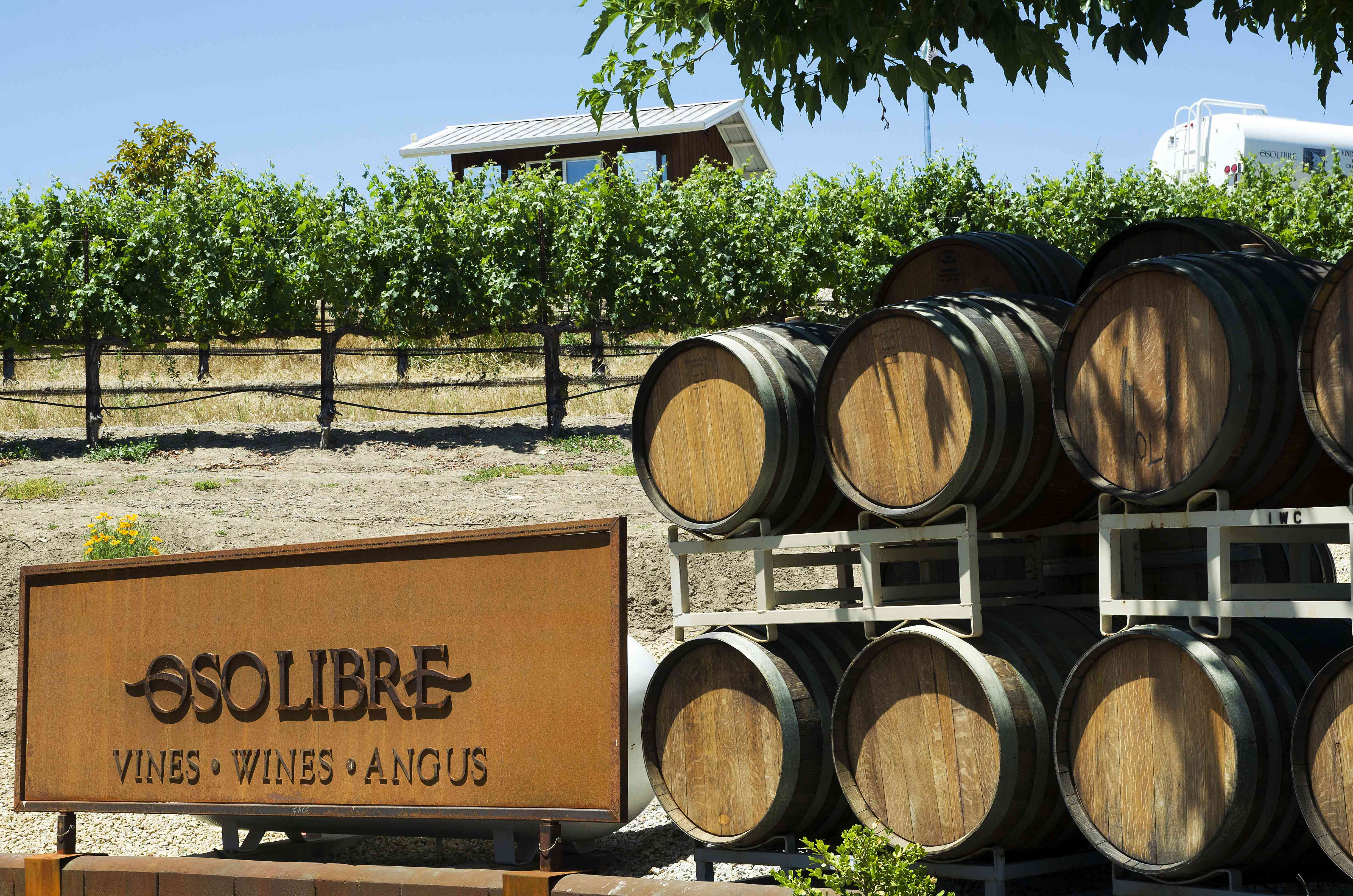 The front of a winery with a sign that says Oso Libre beside barrels.