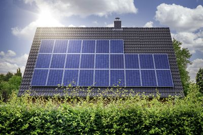Solar panels covering a roof peeking over shrubs